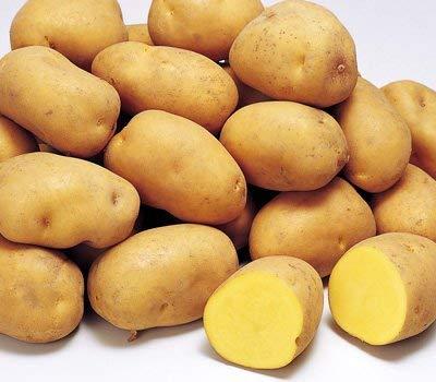 インカのめざめ 北海道産 【 秀品 】 M/L/2Lサイズ 3kg以上 正規品 人気 おすすめ じゃがいも 芋