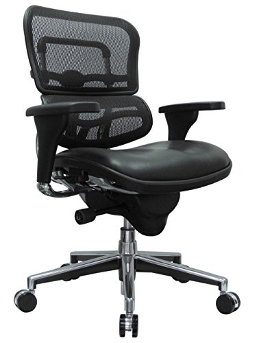 Eurotech Seating Ergohuman Mid Leather Seat/Mesh Back Swivel Chair, Black