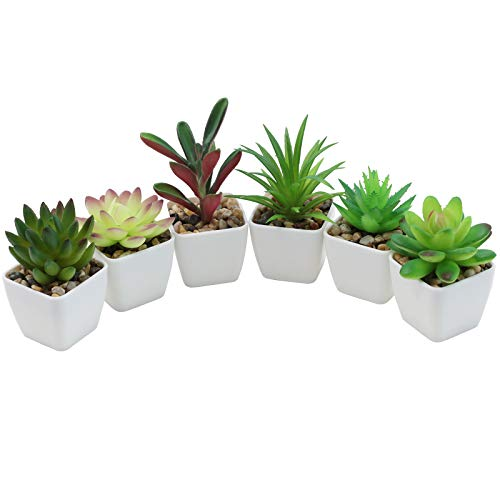 Nubry Mini Fake Succulent Plants Artificial Plastic Succulents Potted Faux Assorted Plants for Home Office Table Decoration, Set of 6 (White Plastic Pots)