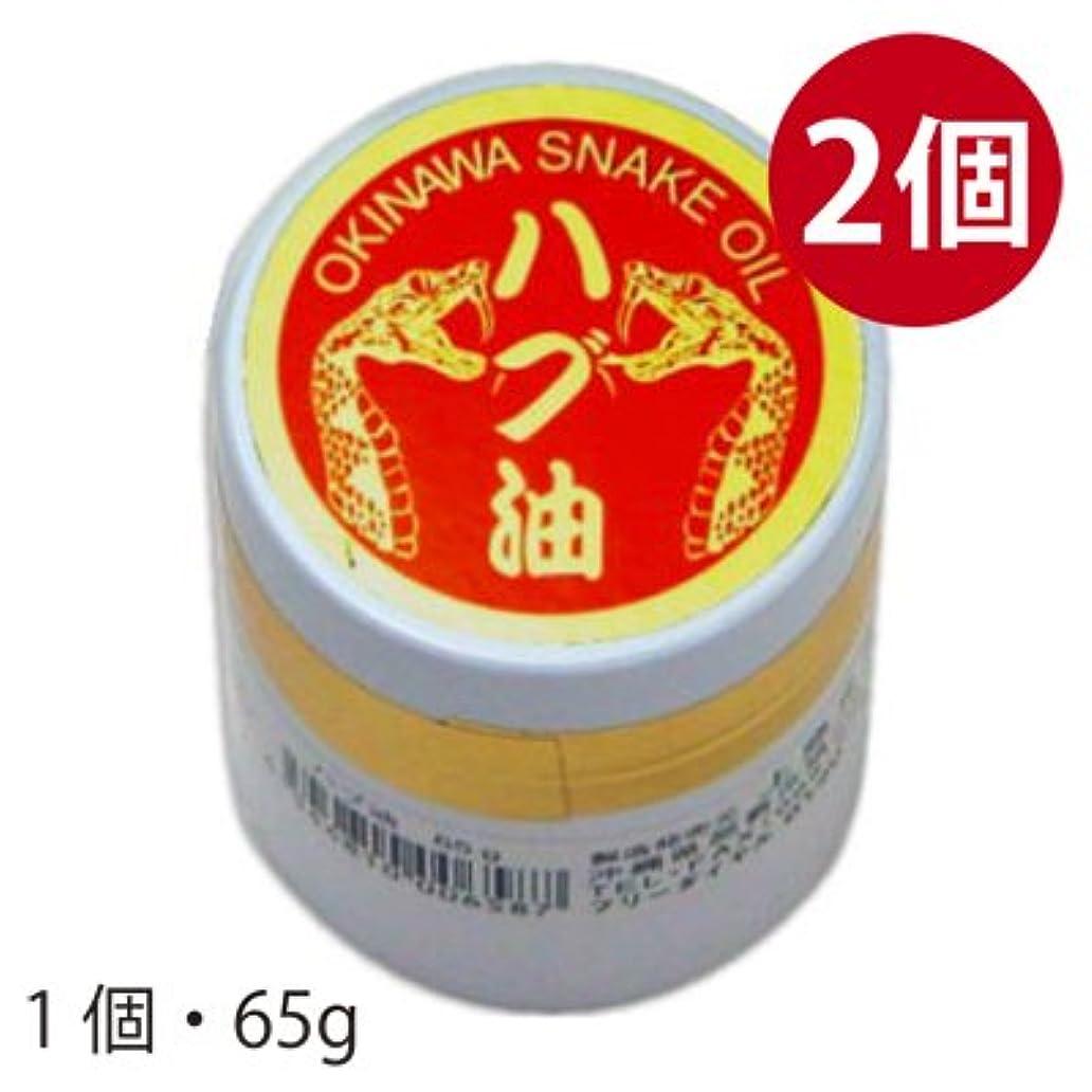 分注する論理的に抵抗する沖縄県産 ハブ油軟膏タイプ 65g×2個