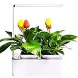 Intelligent Hydroponics Growing System Indoor Herb Garden Hydroponic Garden Starter Kit with LED Grow Light,Can Adjust The Light Mode As a Table Lamp.