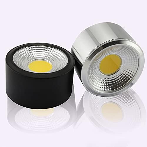WHEEJE Techo 3W 5W 7W 10W 15W COB LED Downlight Ronda, Ropa, Exposición, Luz decorativa de encendido (Body Color : Silver)