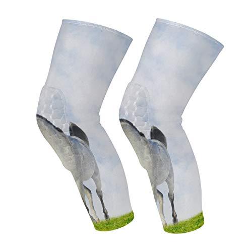 Witte Arabische paard knie mouwen kalf been ondersteuning compressie sokken honingraat beschermer Gear Eén maat Kleur 1