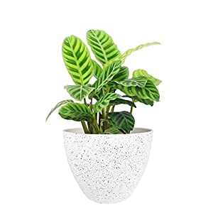 Flower Pots Outdoor Indoor Garden Planters,Plant Pots Containers with Drain Hole, Speckled White (8.6 inch, 1 Pack)