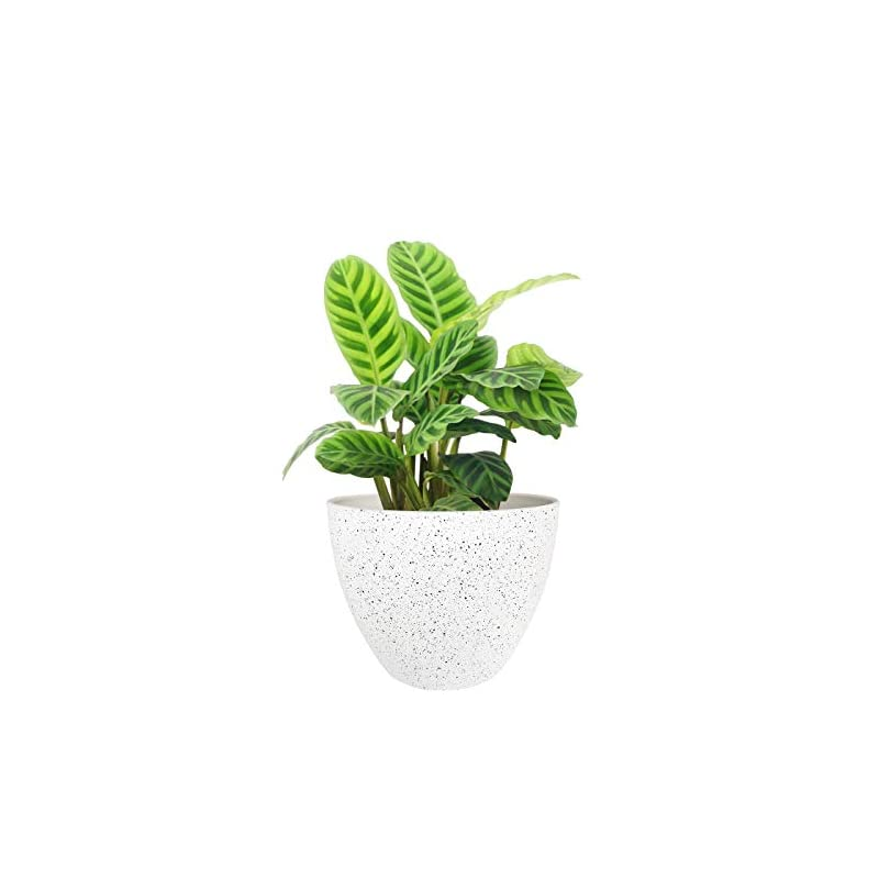 silk flower arrangements flower pots outdoor indoor garden planters,plant pots containers with drain hole, speckled white (8.6 inch, 1 pack)