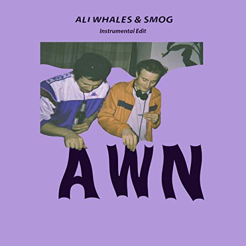 AWN (Instrumentals)