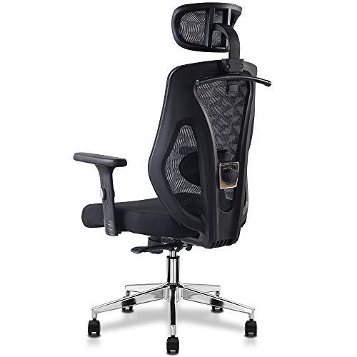 Cedric Sedia da ufficio ergonomica con supporto lombare, morbidi cuscini di seduta Sedia da scrivania in rete con poggiatesta regolabile, braccioli 3D, funzione di inclinazione-certificazione EN1335