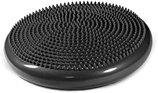 Therapist's Choice Inflated Air-Filled Stability Balance Disc-Black