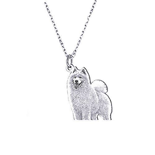 TWinkle Personalizado Mascota/Gato/Perro joyería Silueta Personalizada Grabado Foto Collar Colgante...