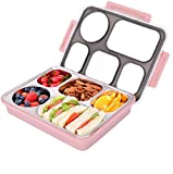 Kids Bento Lunch Boxes Review and Comparison