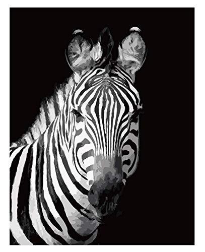 ysldtty Puzzle 1000 Pezzi in Bianco E Nero Zebra Animal Art Acrilico Rpuzzles Giocattoli per Adulti Puzzle per Bambini Giocattoli Educativi