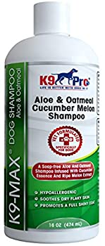 Oatmeal Dog Shampoo and Conditioner - For Dogs With Allergies And Dry Itchy Sensitive Skin Best Hypoallergenic Medicated Tear Free Anti Itch For Puppy - With Aloe Cucumber Essence and Melon Extract