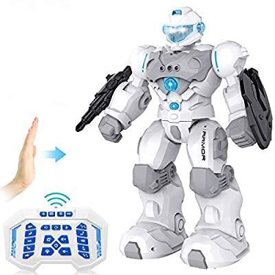RC Robot for Kids Intelligent Programmable Robot with Infrared Controller Toys,Dancing, Singing,Blue Eyes,Gesture Sensing /Remote Control Robot Kit,Present for 3 -12 Years Old Kids Boys and Girls,Grey from hgsd
