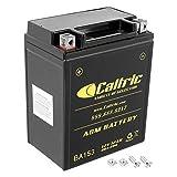 Caltric compatible with Agm Battery Kawasaki...