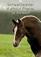 Schwarzwaelder Kaltblut Pferde im Portrait (Wandkalender 2022 DIN A4 hoch): Ganz nah begleitet Sie das Schwarzwaelder Kaltblut Pferd durch das Jahr (Monatskalender, 14 Seiten )