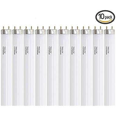 (Case of 10) F32T8/SPX65 DAYLIGHT Linear Fluorescent 32-Watt T8 FO32 865 Light Bulbs 48