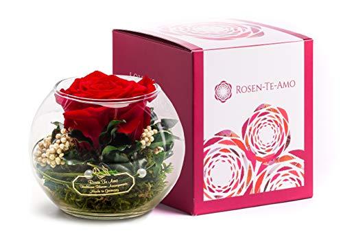 Rosen-Te-Amo, duftige konservierte ewige Rose rot in Glas-Vase handgefertigt Deko-Foliage in feiner Geschenk-Box. Infinity Rosen sie & Deko Wohn-Zimmer