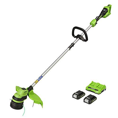 Greenworks Akku-Rasentrimmer GD24X2LT (Li-Ion 2x24V 33cm Schnittbreite 6200 U/min 2mm Fadendurchmesser automatischer Fadenvorschub Flowerguard Hi/Low-Modus mit 2x2Ah Akku und Ladegerät)