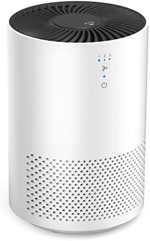 Intelabe HEPA Air Purifier Air Filter with Fragrance Sponge Air Cleaner Eliminate Smoke Dust product image