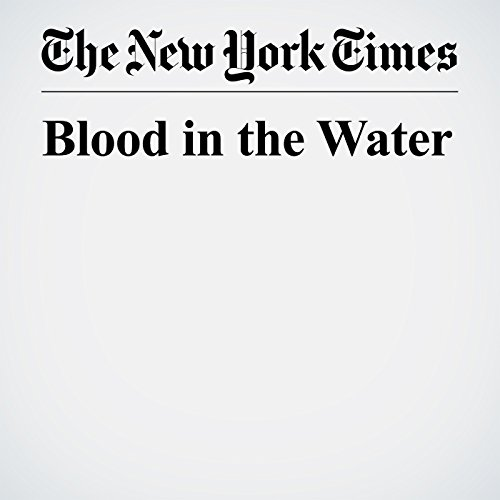 Blood in the Water copertina