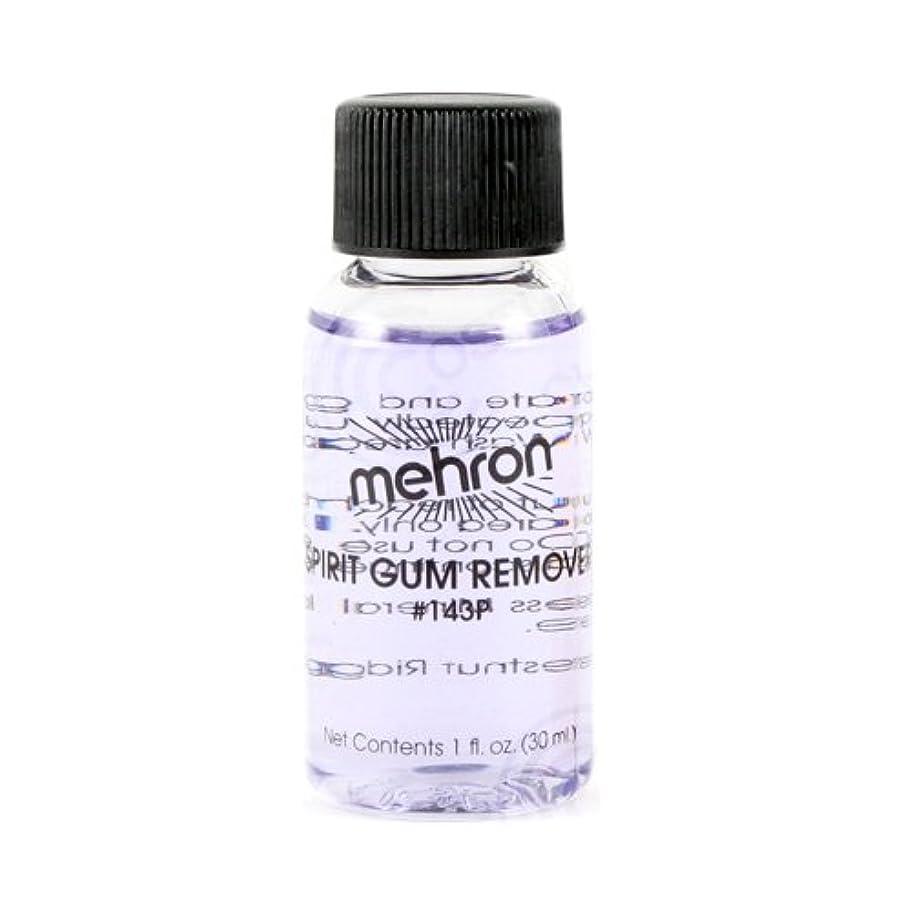 配管工技術者最初(6 Pack) mehron Spirit Gum Remover (並行輸入品)