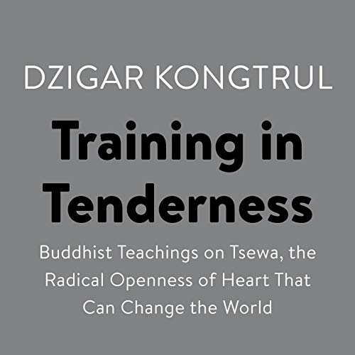 Training in Tenderness audiobook cover art