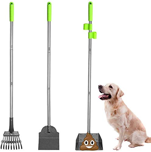SCENEREAL Pet Poop Tray, Rake & Spade Set - Dog Metal Pooper Scooper with Detachable Long Handle Stainless Steel for House Yard Cleaning