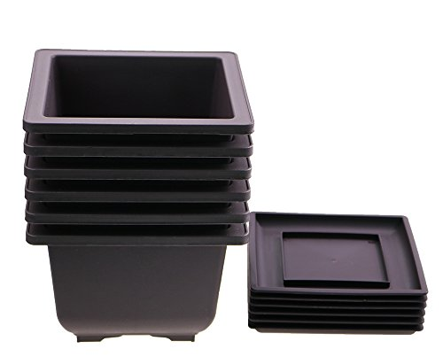 6PCS/Pack Retro Style Mocha Square Plastic Flower Pot/Bonsai Growing Pots Maceta Cuadrada Simulational Purple Sands Pots with Tray Deep Square 6.8''