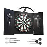 Target Darts Arc Dartboard-Beleuchtungssystem im Heimkabinett-Set Inklusive Weltmeister-Dartboard und 2 Dart-Sets