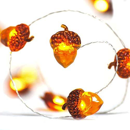 Lichterkette Eicheln Deko Lichterketten, 2M 20 LED Lichterketten Batteriebetrieben mit 8 Flimmer Modi, Fernbedienung und Timer für Herbst, Halloween, Erntedankfest, Hochzeit, Geburtstag Party