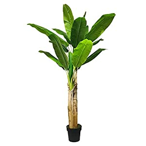 Artificial Bird of Paradise Tree – 5.9 Feet Banana Leaf Tropical 70 Inch Palm Plant with 2 Trunk for Indoor Outdoor Faux Plants