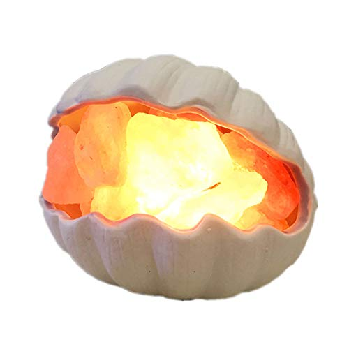 EIU Lámpara De Sal De Cristal del Himalaya Natural Puro, Lámpara De Sal De Roca De Cristal De Shell Mesita De Noche Luz De Noche Exquisitamente Hecha A Mano Regalos De Cumpleaños