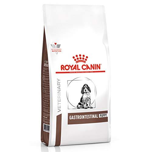 Royal Canin Pienso para perros Gastrointestinal Puppy, 10 kg
