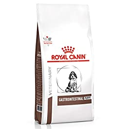 ROYAL CANIN Gastro Intestinal Jun Dog Food, 2.5 kg
