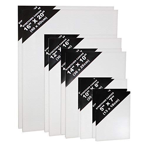 10 Teiliges Leinwand Set- Weiße Künstler Leinwände- Leinwand Tafeln Zum Bemalen- Acryl Malerei - Weiße, bespannte Leinwände für Acrylmalerei in Verschiedenen Größen - Leinwände für Aquarellmalerei (Canvas)