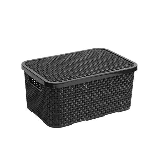 BranQ Rattan Aufbewahrungsbox mit Deckel Box Kiste Aufbewahrungsbehälter (7L, Anthrazit)