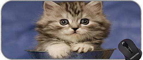 Largo XXL Mousepad, Gatito Tabby Cat Animal Gato Gato Antideslizante Base de Goma Mousepad