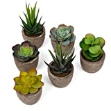 U'Artlines Artificial Plastic Mini Plants Topiary Shrubs Fake Plants with Gray Pot for Bathroom,House Decorations (6pcs Succulent A)