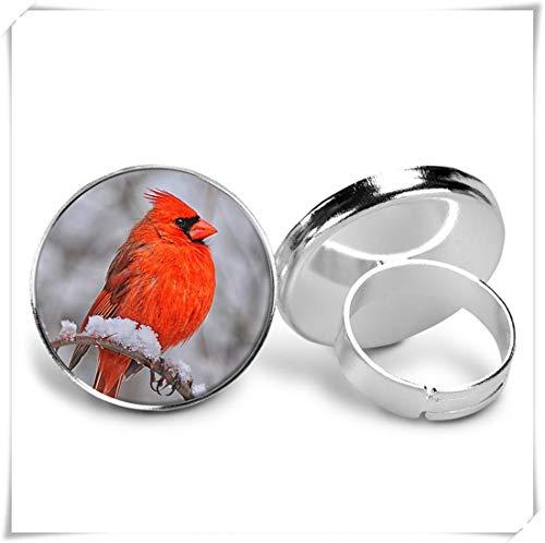 Collar cardenal, joyería de declaración, pendientes de gota, anillo de dedo, llavero, pendientes de tuerca, llavero
