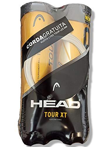 Head Bolas de tenis Tour XT Bipack 2 tubos de 4 + cuerda Linx Tour de regalo