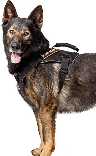 DINGO GEAR S03203 Militär-Hundegeschirr für Extreme Aufgaben, starker Griff, zuverlässiges Cobra System, handgefertigt