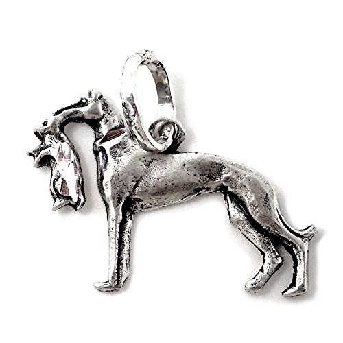 Colgante plata Ley 925m perro caza 23mm. raza galgo presa boca liso...