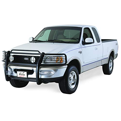 03 f150 grille guard - 2
