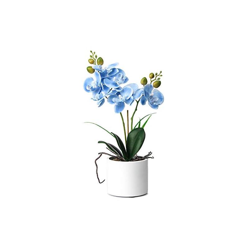silk flower arrangements jusdreen artificial flower bonsai with ceramic vase vivid orchid flower arrangement phalaenopsis flowers pot for home office décor house decorations