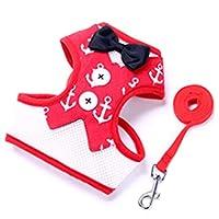 ペットトラクションロープ犬の散歩アーティファクト小型犬のイブニングドレスチェストストラップペット用品 (Color : Rose red, Size : S)