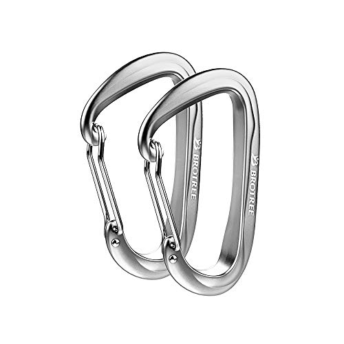 Brotree Carabiner D-Ring Wire Gate/Locking Carabiner Clip Hook for Hammock, Camping, Hiking, Fishing, and More