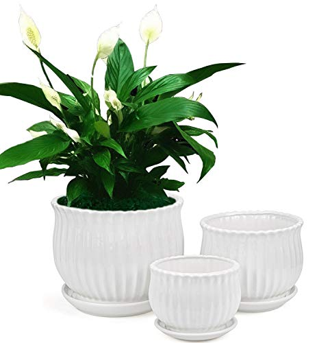 Yesland Ceramic Flower Plant Pots with Saucer, Set of 3 in Different Sizes, Modern Round Ceramic Succulent Planter Pots with White Stripe Texture for Garden