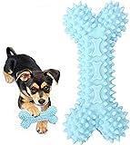 Hunde-Spielzeug, Kauen, aggressive Haustierzahnbürste gegen Beißen, für Welpen, ungiftig, robust, für kleine / mittelgroße / große (blau)
