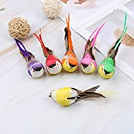 6pcs Artificial Feather Birds Foam Mini Love Birds for Home Ornaments Wedding Embellishing Craft Garden Decoration with Metal Clip 15cm/5.9inch