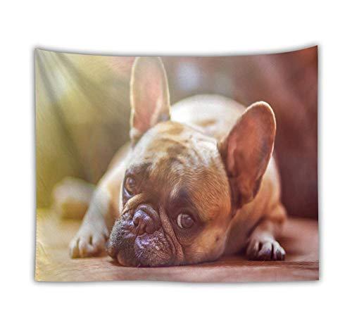 KHKJ Bulldog de Dibujos Animados Tapiz Colgante de Pared Animal Hippie Tapiz Mascota Gato Perro Pug Alfombra de Playa Estera de Yoga Revestimiento de Pared Decorativo A16 95x73cm